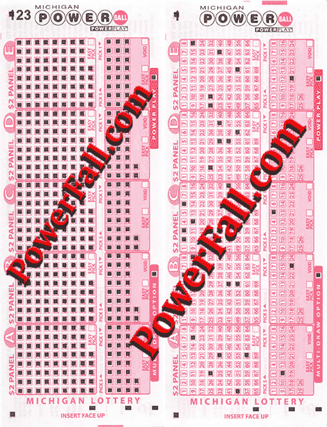 Photo of Printed Michigan Play-Slip for Powerball
